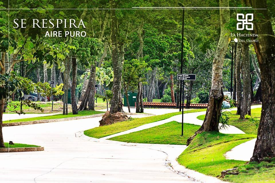 Terreno en Venta Hacienda del Urubó - Terreno en venta Foto 11