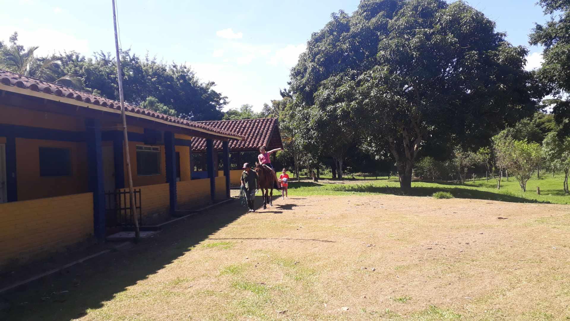 Quinta propiedad agrícola en Venta En Venta #propiedad #ganadera zona #terebinto Foto 9