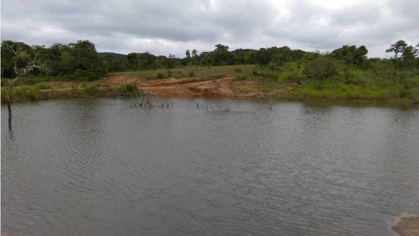 Terreno en Venta Propiedad ganadera en San Javier, 24km al oeste camino hacia El Puente Foto 19