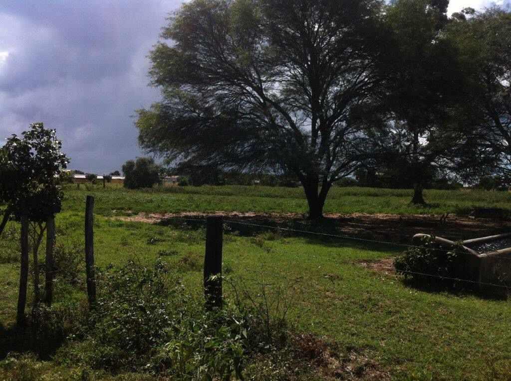 Terreno en Venta Km 12 Doble vía a la Guardia y 3km ida a Camiri Foto 4