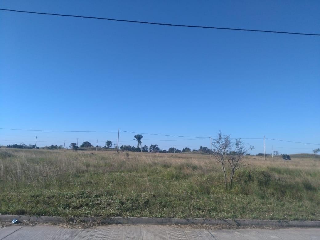 Terreno en Venta CUIDAD DEL URUBO DE TECHO Foto 12