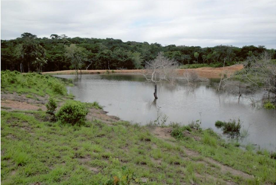 Terreno en Venta Propiedad ganadera en San Javier, 24km al oeste camino hacia El Puente Foto 10