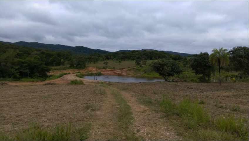 Terreno en Venta Propiedad ganadera en San Javier, 24km al oeste camino hacia El Puente Foto 13
