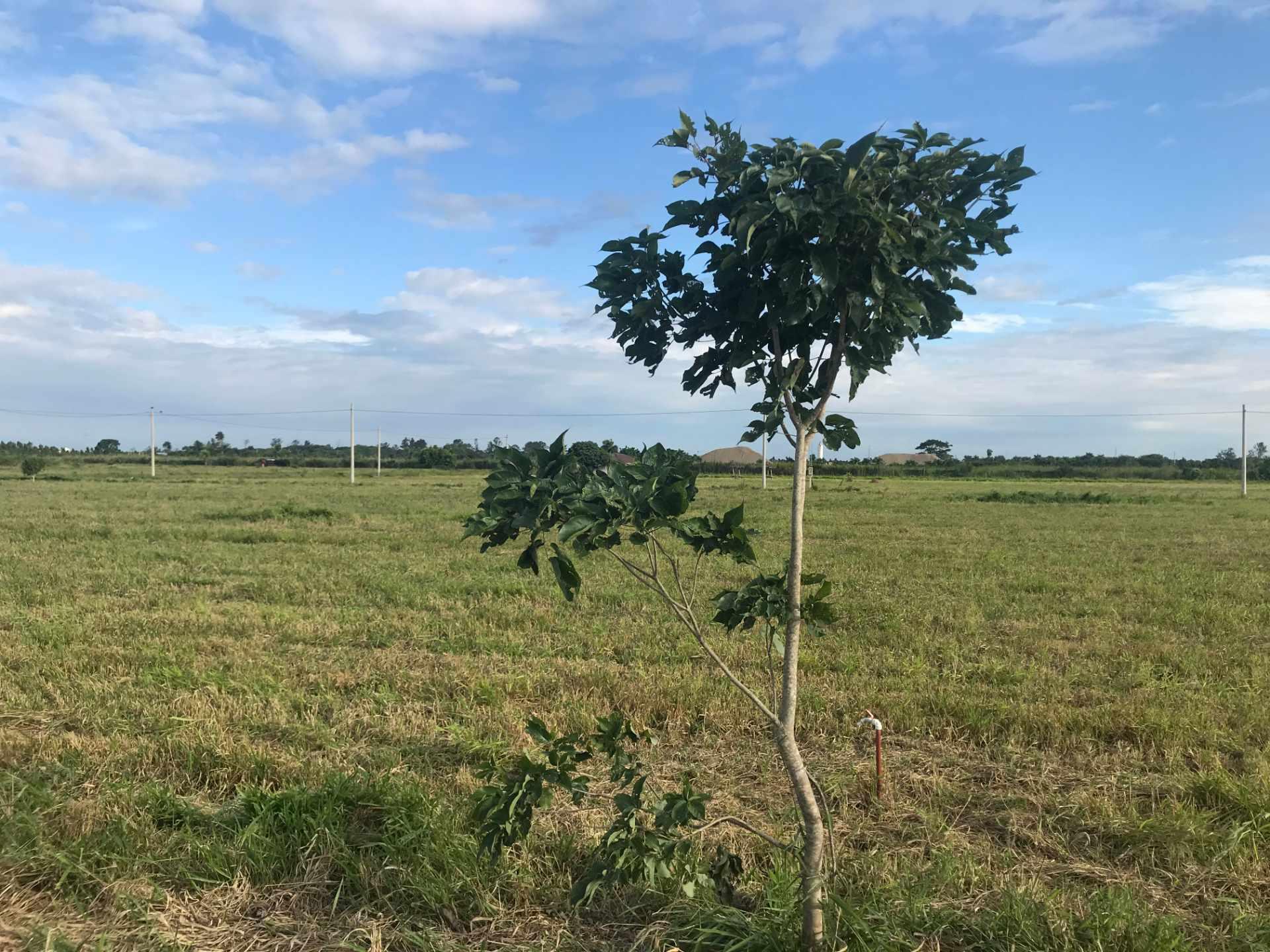 Terreno en Venta Complejo Campestre Norte, Km 23 Carretera al Norte.  Foto 17