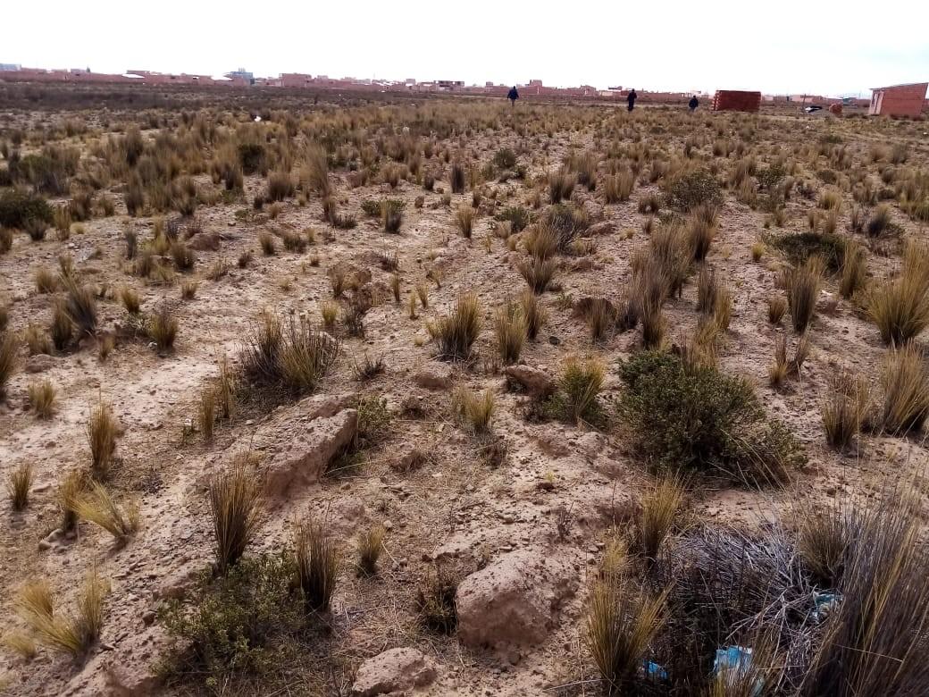 Terreno en Venta El Alto, Zona Ventilla, Urbanización Los Rosales Foto 7