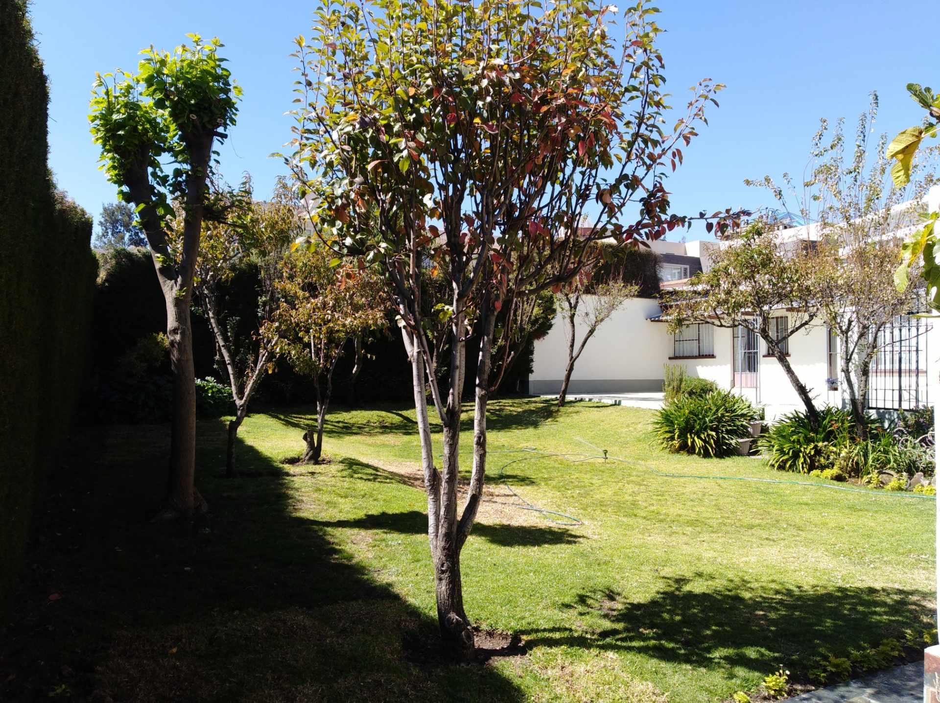 Casa en Alquiler CALACOTO calle 16 a 1/2 cuadra de la Av. Julio C. Patiño.  Foto 5