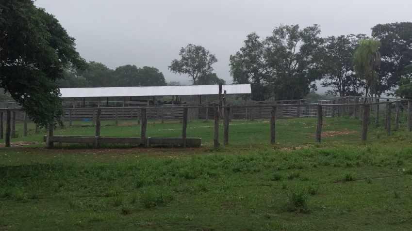 Terreno en Venta Propiedad ganadera en San Javier, 24km al oeste camino hacia El Puente Foto 2