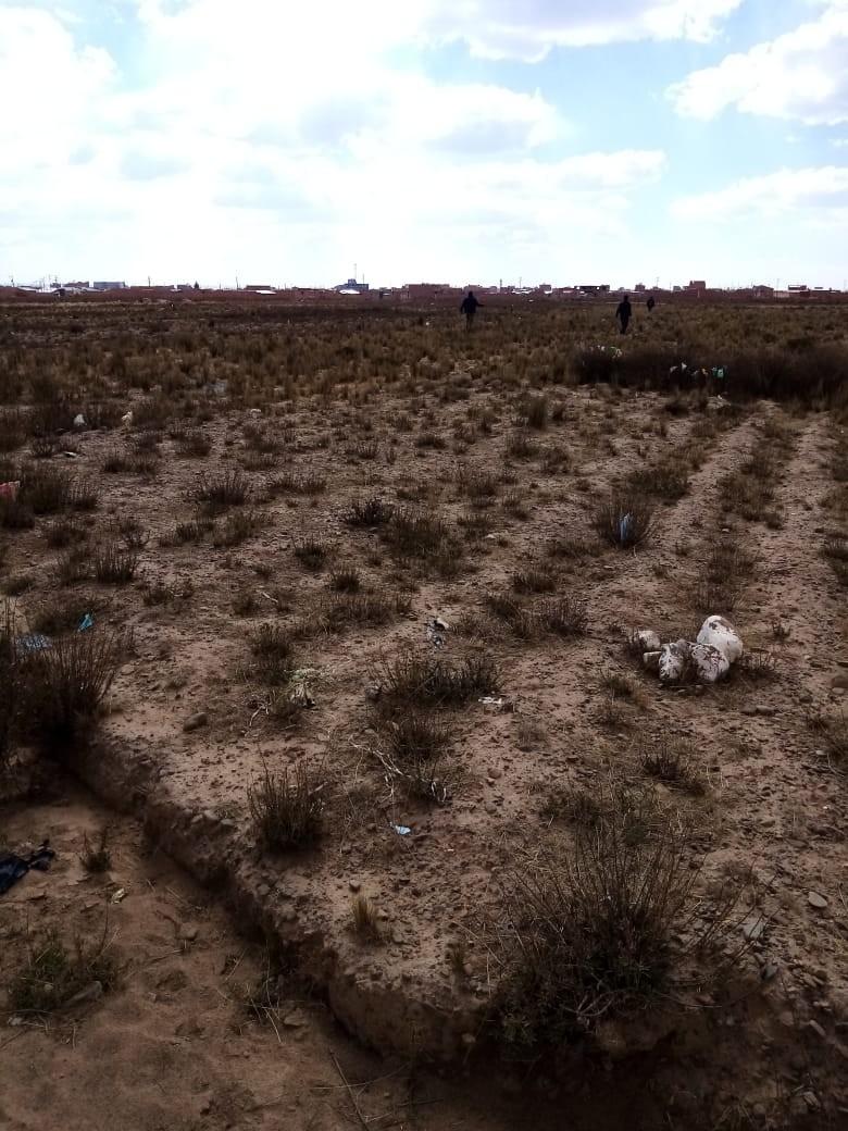 Terreno en Venta El Alto, Zona Ventilla, Urbanización Los Rosales Foto 5