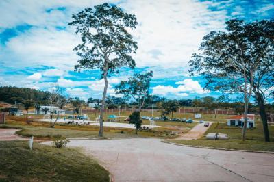 Las Palmas III